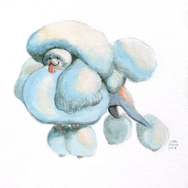 Portrait-of-Poodle-in-gouache-and-colored-pencil