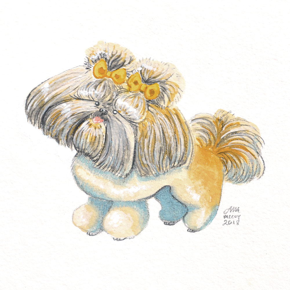 Portrait-of-Shih-Tzu-in-gouache-and-colored-pencil