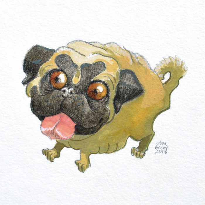 Portrait-of-Pug-in-gouache-and-colored-pencil-by-Abigail-McCoy