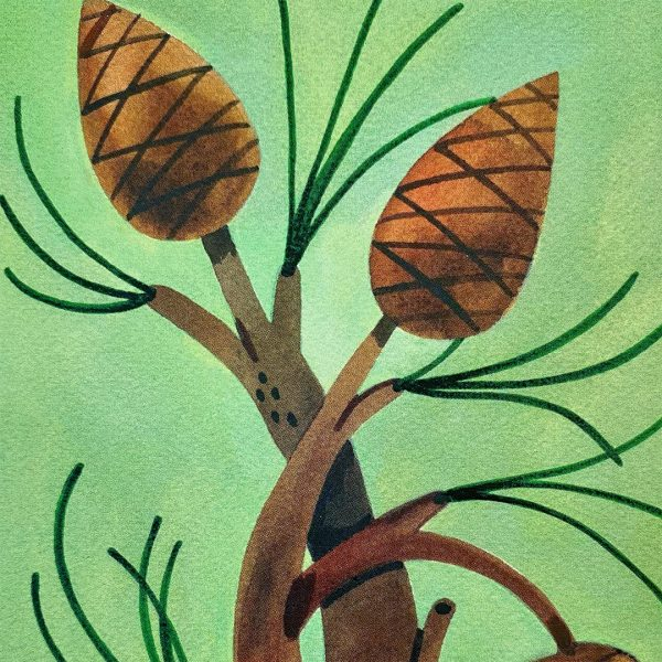 Print of 3 pine cones on branches