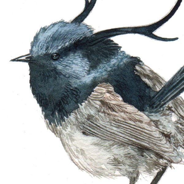 Original Watercolor of horned wren